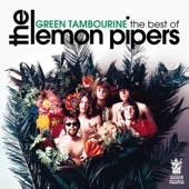 Bubblegum Music Is The Naked Truth Volume - Green Tambourine