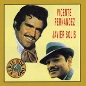 Vicente Fernández - Al Final Del Camino (Album Version)