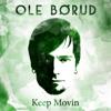 Ole Borud - She's Like No Other artwork