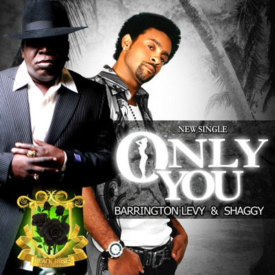Only You - Single - Barrington Levy