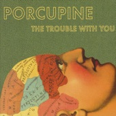 Porcupine - Picture Perfect