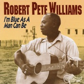 Robert Pete Williams - I'm Blue As a Man Can Be