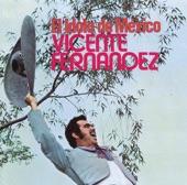 Vicente Fernández - El Rey