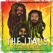 The Itals (feat. Vin Gordon) - In A Dis Ya Time / Harbour View Rock (Feat. Vin Gordon)