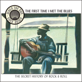 When the Sun Goes Down, Vol. 2: The First Time I Met the Blues (Remastered)