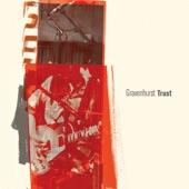Gravenhurst - Trust (Radio Edit)