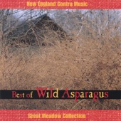 Best of Wild Asparagus