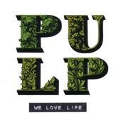 Pulp - Birds in Your Garden