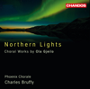 Ola Gjeilo, Harrington String Quartet, Charles Bruffy, Phoenix Chorale, Emmanuel Lopez, Alison Chaney & Ted Belledin - Gjeilo: Northern Lights artwork