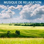 Musique de Relaxation (Musique pour la Découverte du Bien-être)