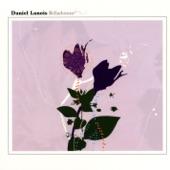 Daniel Lanois - Frozen