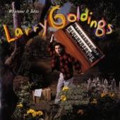 Larry Goldings - Boogie On Reggae Woman