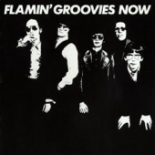 Flamin' Groovies - All I Wanted