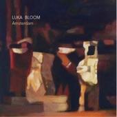 Luka Bloom - Perfect Groove