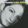 Gloria Estefan - Turn the Beat Around (David Morales Club Mix / Def Conga Mix) artwork