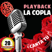 20 Playback Clasicos De La Copla. Karaoke Y Canta Tu !