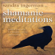 Sandra Ingerman - Shamanic Meditations: Guided Journeys for Insight, Visions, And Healing (Unabridged)