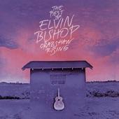 Elvin Bishop - Party Till The Cows Come Home (Album Version)