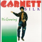 Garnet Silk - Keep Them Talking