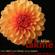 Delibes: Lakmé - Chorus and Orchestra of Opéra Comique, Paris, Georges Sebastian, Mado Robin, Agnes Disney & Jacques Jansen