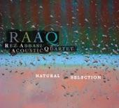 Rez Abbasi Acoustic Quartet - New Aesthetic