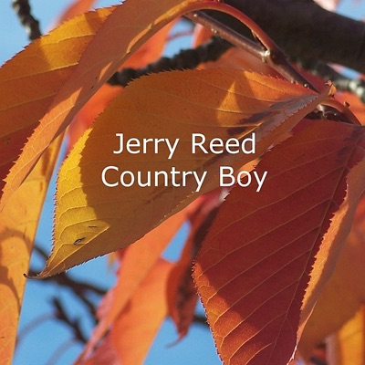 Country Boy - Jerry Reed