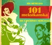 101 Meksikanska