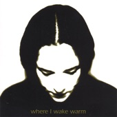 Where I Wake Warm - Water Warps My Words