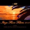 Ibiza Floor Fillers 2010
