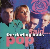 Darling Buds, The - Let's Go Round There
