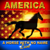 America - A Horse With No Name artwork