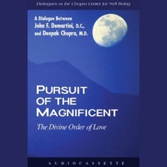Pursuit of the Magnificent: The Divine Order of Love (Unabridged)
