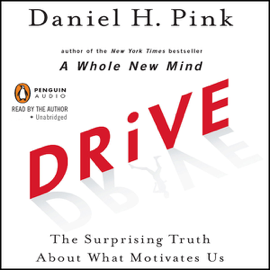 Drive: The Surprising Truth About What Motivates Us (Unabridged) audiobook