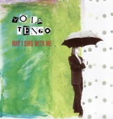 Yo La Tengo - Detouring America With Horns