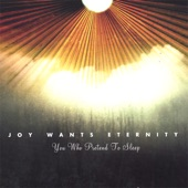 Joy Wants Eternity - From Embrace to Embrace