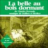Charles Perrault - La Belle au bois dormant artwork