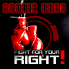 Fight for Your Right RainDropz Bootleg Remix Edit - Boogie Bros mp3