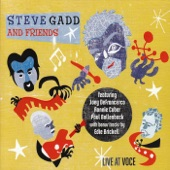 Steve Gadd and Edie Brickell - Down