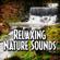 Gentle Stream to Help You Sleep With Nature Sound - Relax Meditate Sleep