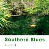 Mississippi John Hurt - Got the Blues
