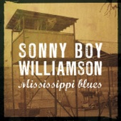 Sonny Boy Williamson - Check Up On My Baby