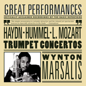 Concerto In E-flat Major for Trumpet and Orchestra, H.VIIe: 1: III. Allegro