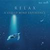 Relax - A Liquid Mind Experience - Liquid Mind