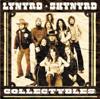 Lynyrd Skynyrd - Sweet Home Alabama (Live) ilustración
