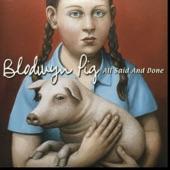 Blodwyn Pig - Serenade To A Cuckoo