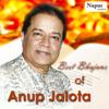 Anup Jalota - Best Bhajans of Anup Jalota artwork