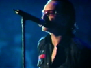 Original of the Species - U2