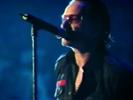 Original of the Species - U2