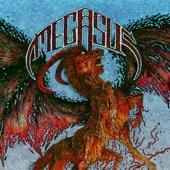 Megasus - Paladin Vs Berserker