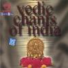 Puddukottai Mahaliga Sastrigal & Sanskrit Scholars - Vedic Chants of India artwork